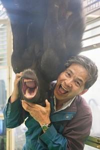 Chimps-Matsuzawa-and-Ai-11.jpg__600x0_q85_upscale